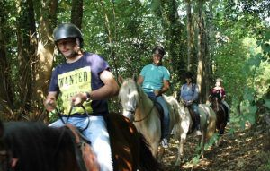 paseos a caballo - loscauces.com